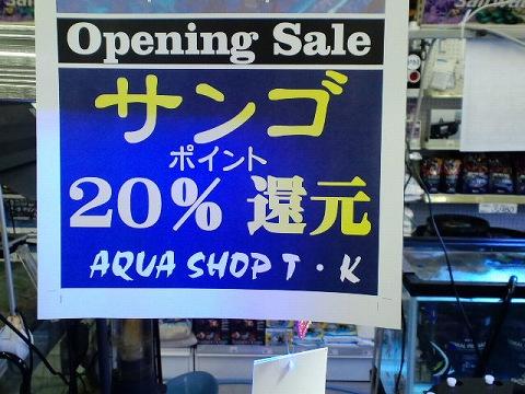 お店訪問20120922_01
