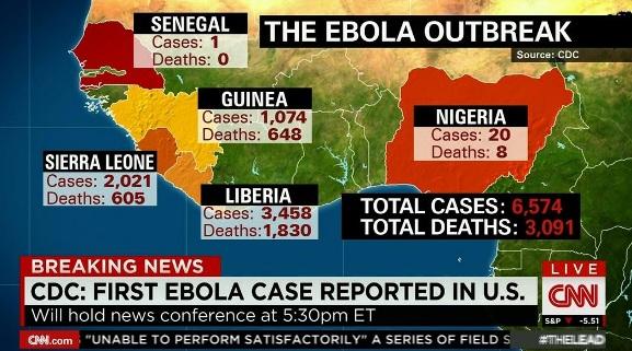 ebola(今のところの内訳)image