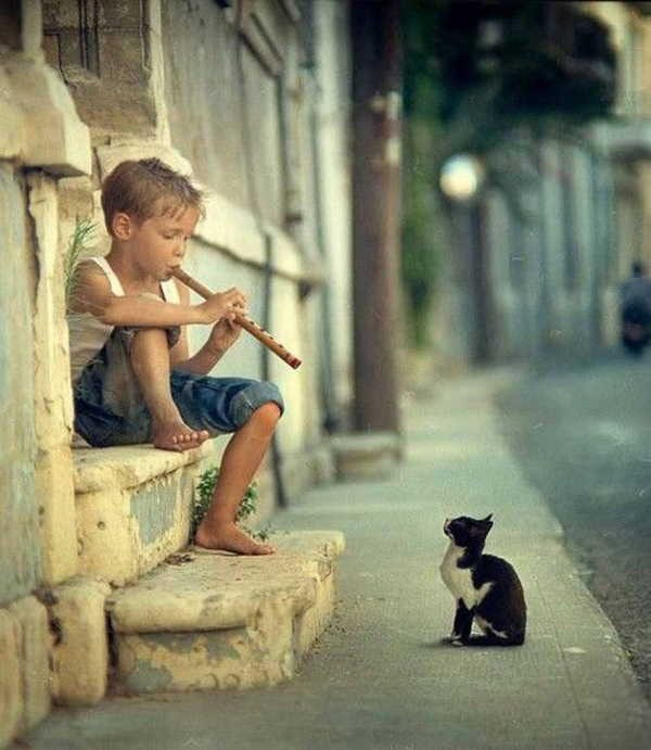 こんな(少年と子猫さん)image