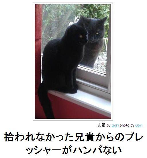 それとなく(ボケて)image