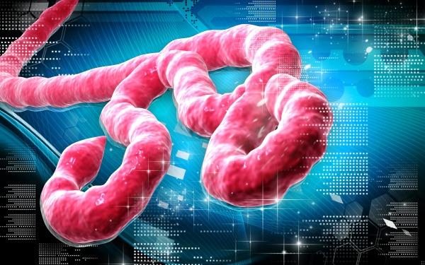 予言(ebola)image