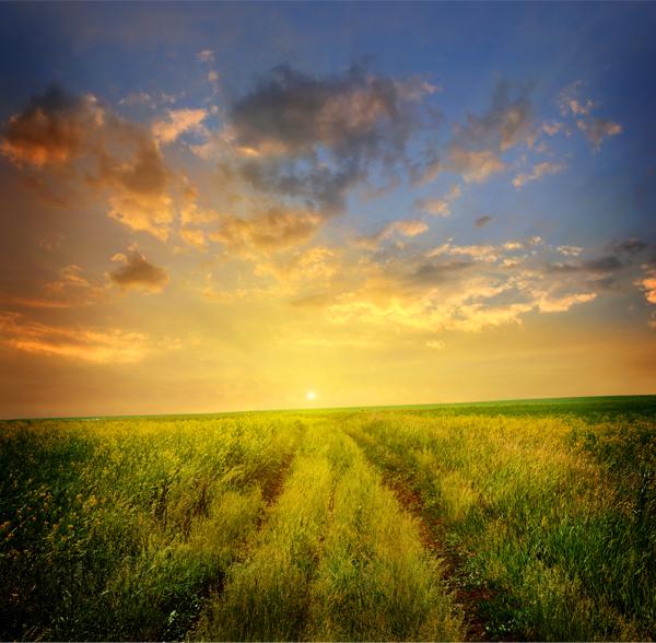 予言(草原の向こうの夕陽)image