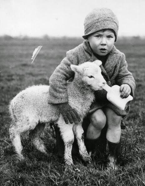 もう一人の(子供と子羊さん)image