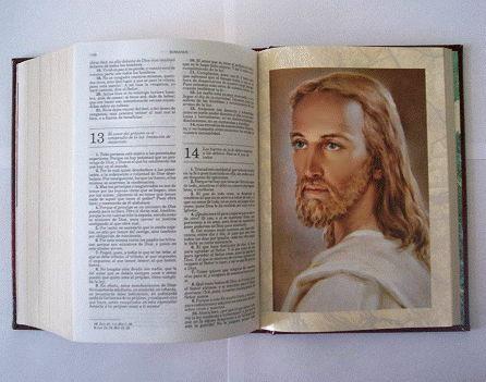 マグダラの5(イエズスと聖書)image
