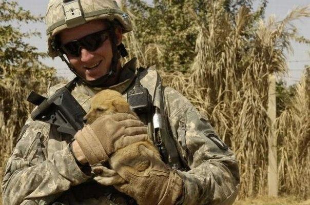 そこはかとなく(兵士と子犬)image