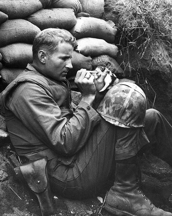 そこはかとなく(兵士と子猫)image