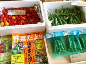 無農薬野菜①