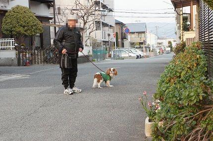 嵐丸 2013.3.16-55