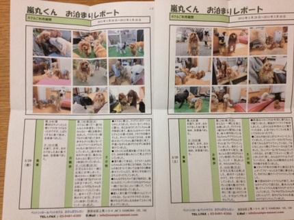 嵐丸 2013.3.30-56