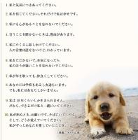 犬の10戒