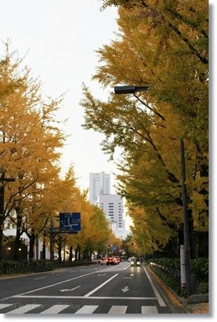 2012-11-26-03.jpg
