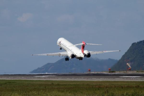 JAL MD90-30 JA004D RJOM 101010 030