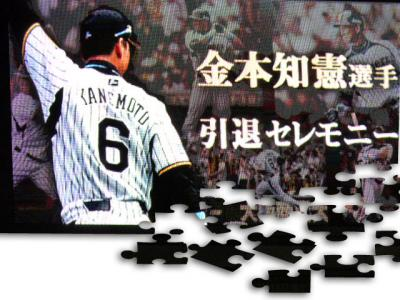 絵日記10・17兄貴引退0