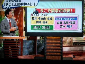 絵日記11・6ヤノスポ3