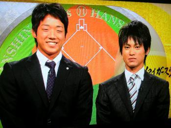 絵日記11・30タイガース党
