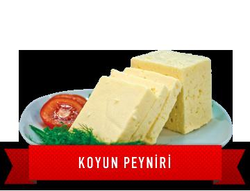 slider_koyun_peyniri.png