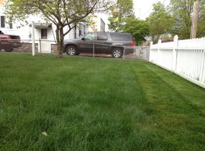lawn4-26-04.jpg