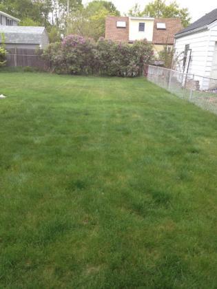 lawn4-26-07.jpg