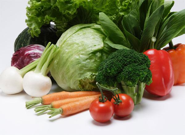 菜食主義者「動物殺すのは可哀想!!」 ぼく「植物はいいの?」