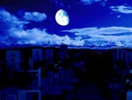 心霊現象信じて無くても夜墓場に一人で行くのは怖い←は?