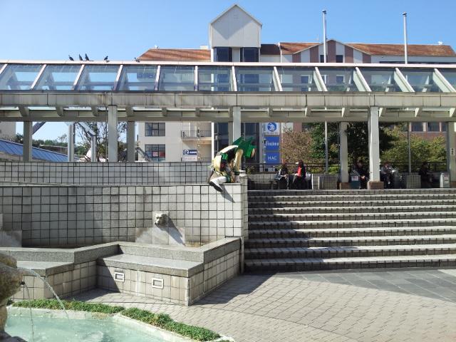 20121021_110617.jpg