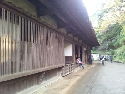 20121124_140410.jpg