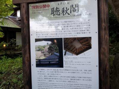 20121124_142852.jpg