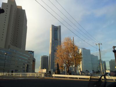 20121212_154930.jpg