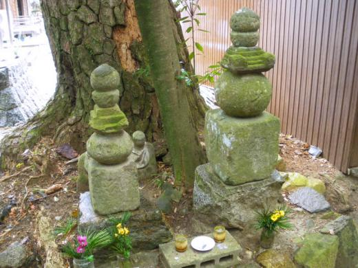 nisiura-muryouji004.jpg