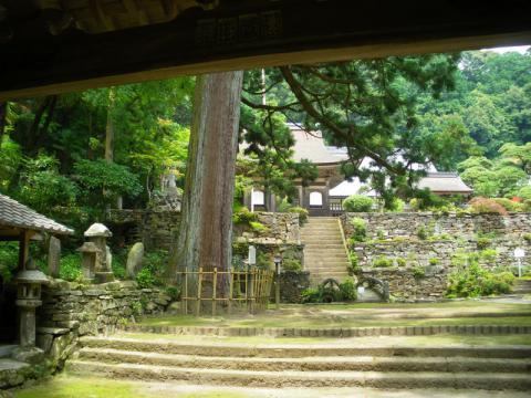 tenonji102.jpg