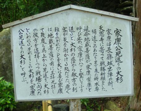 tenonji103.jpg