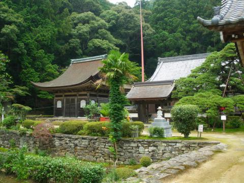 tenonji105.jpg