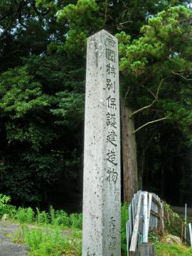 tenonji113.jpg