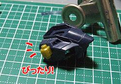stfre060208-5.jpg