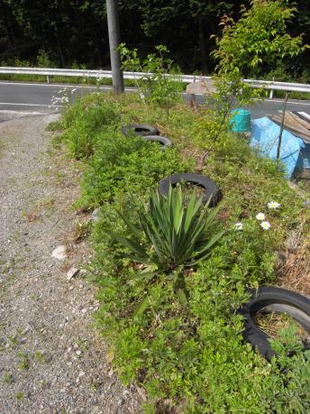タイヤガーデン2:タイヤ設置