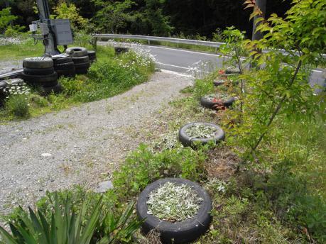 タイヤガーデン4:草をかけて完成