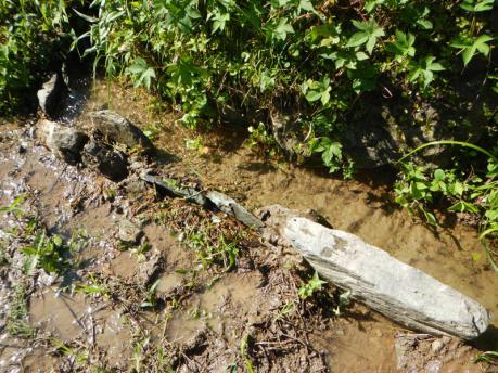 田の水路補修後