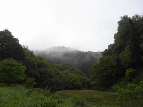 西の畑から見える風景