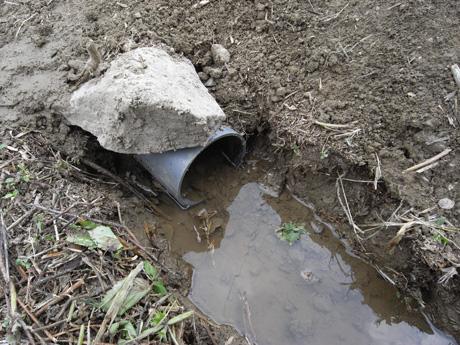 下の田水路1
