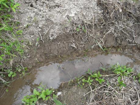 畔塗り1:水を減らす
