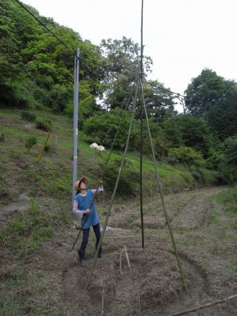 ティピガーデン4:ロープをまわしかける