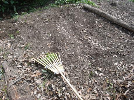 染ガーデン1:草をどける