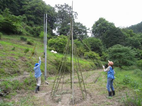 ティピガーデン1:ロープをまわしかけ仕上げ