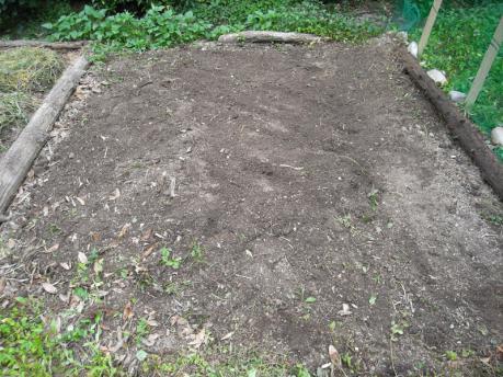 曼荼羅ガーデン2:土地をならす