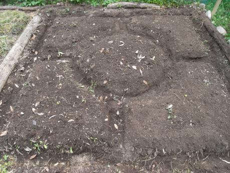 曼荼羅ガーデン5:畝をならす