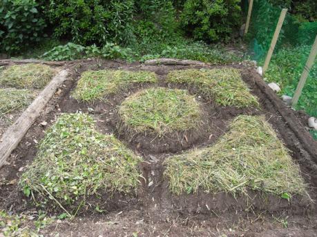 曼荼羅ガーデン6:草をのせて完成