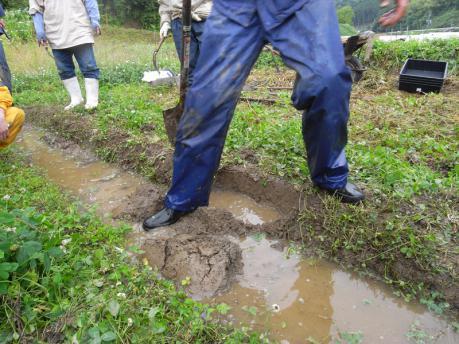 畔塗り2:崩した土を水の中へ落とす
