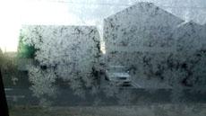 雪の結晶!
