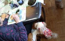 母とお昼ご飯1