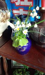お庭の花a